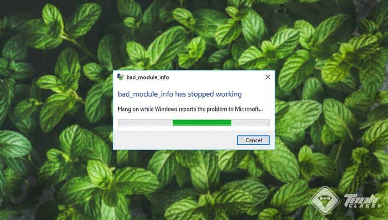 Fix Bad Module Info has Stopped Working on Windows 10